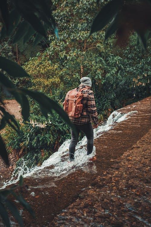 Ingyenes stockfotó gyalogló, kaland, sétáló témában