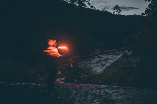 Ingyenes stockfotó alkonyat, szürkület, tűzifa témában