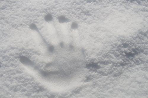Foto d'estoc gratuïta de a l'aire lliure, blanc, constipat, exterior