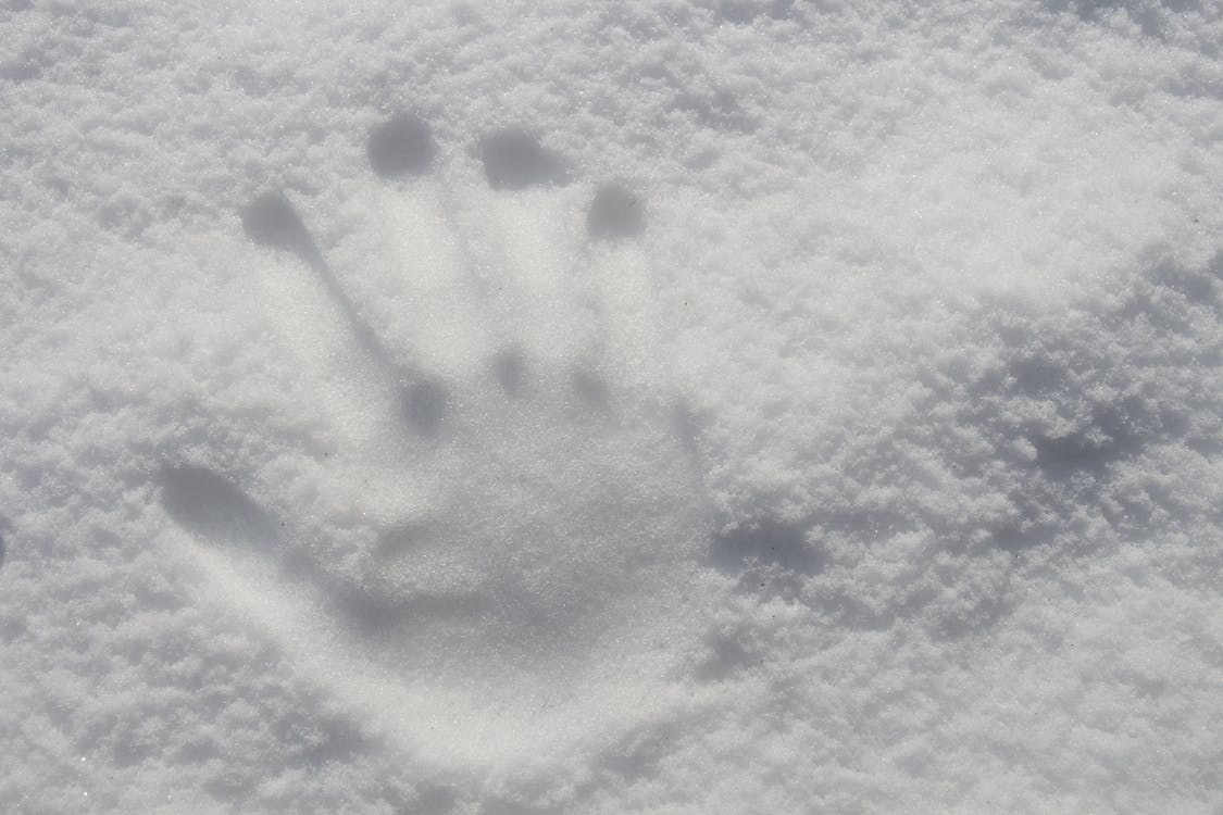 Hand Print On Snow