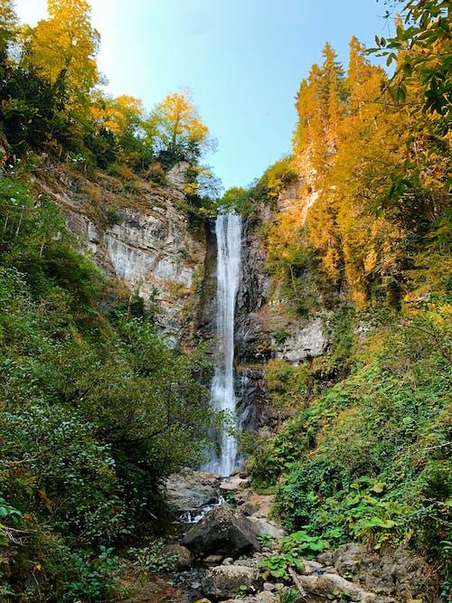 Foto stok gratis air terjun, alam, alami