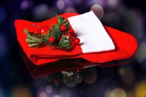 假日, 圣诞精神, 新的, 聖誕裝飾 的 免费素材照片