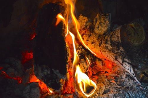 겨울, 벽난로, 불의 무료 스톡 사진