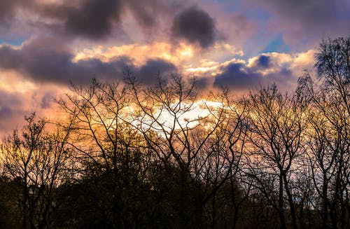 傍晚的太陽, 冷靜, 土地, 土地,陆地,大地 的 免费素材图片