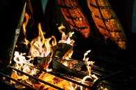 Focal Point Photo of Burning Wood in Black Steel Grate