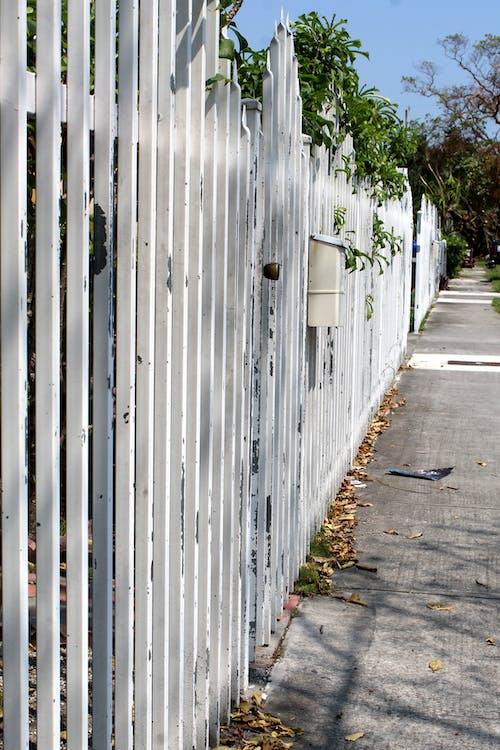 Imagine de stoc gratuită din alb, gard, în siguranță, siguranță