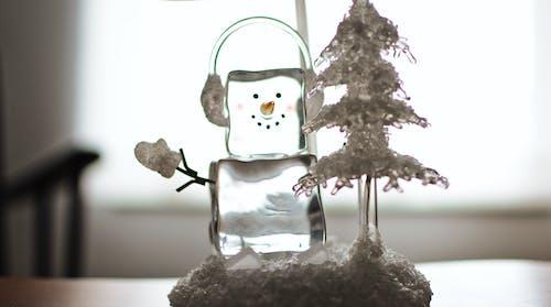 Kostnadsfri bild av figur, glas, inomhus, is