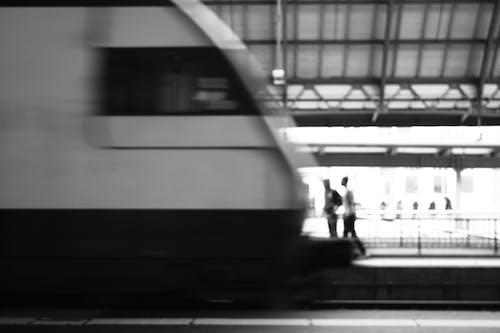 中心站, 人, 火車站, 黑白攝影 的 免费素材照片