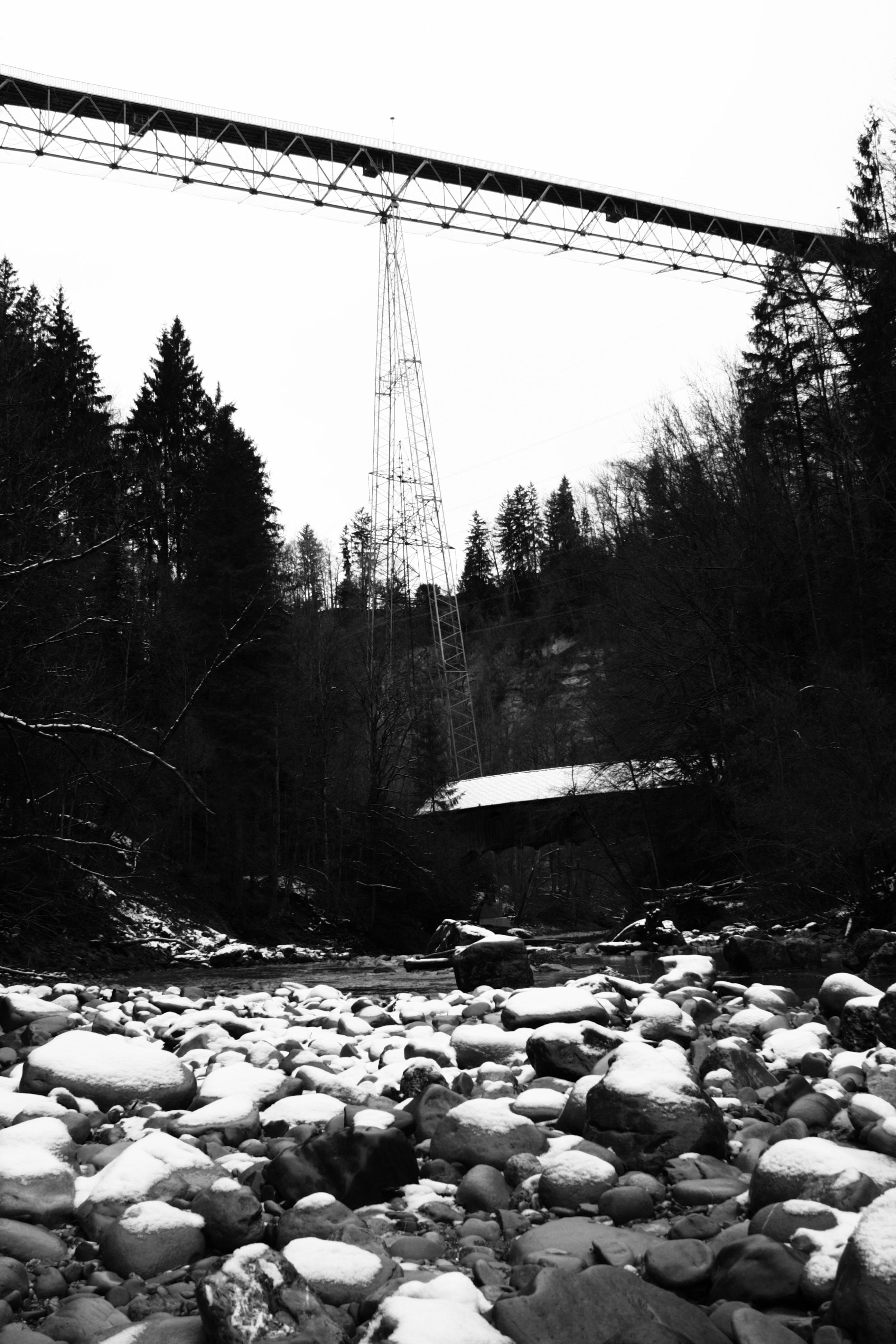 Gratis lagerfoto af bro, sort-hvid, sort/hvid fotografi