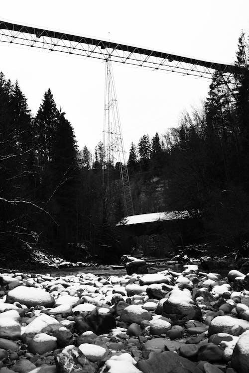 橋, 黑白攝影, 黑與白 的 免费素材照片