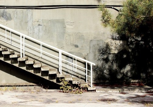 Photo of the Staircase near the Tree