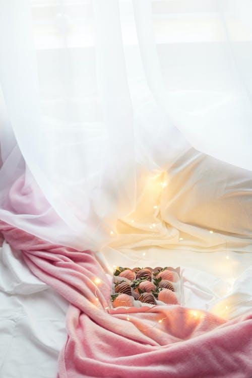 Kostenloses Stock Foto zu beleuchtung, blume, braut
