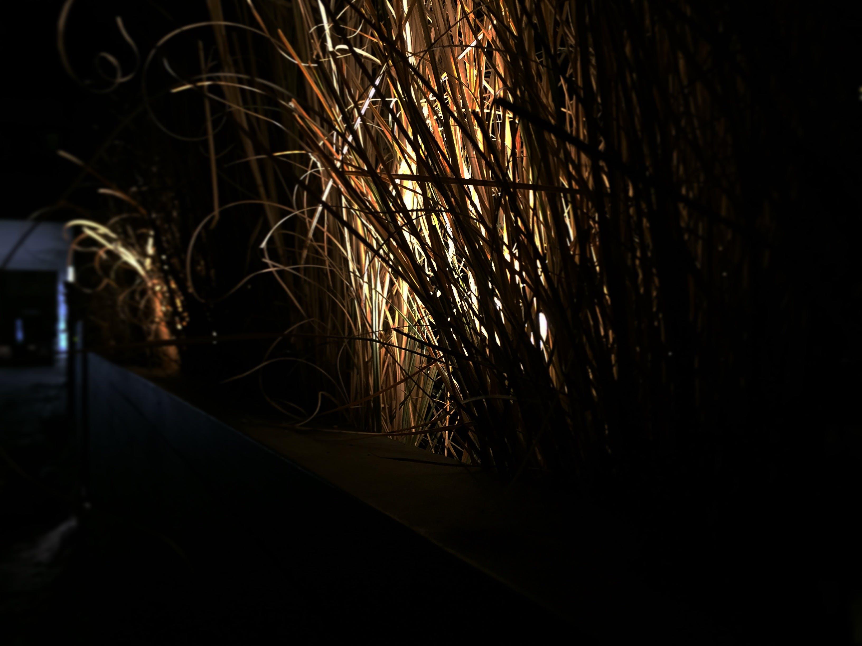 Free stock photo of light, night, dark