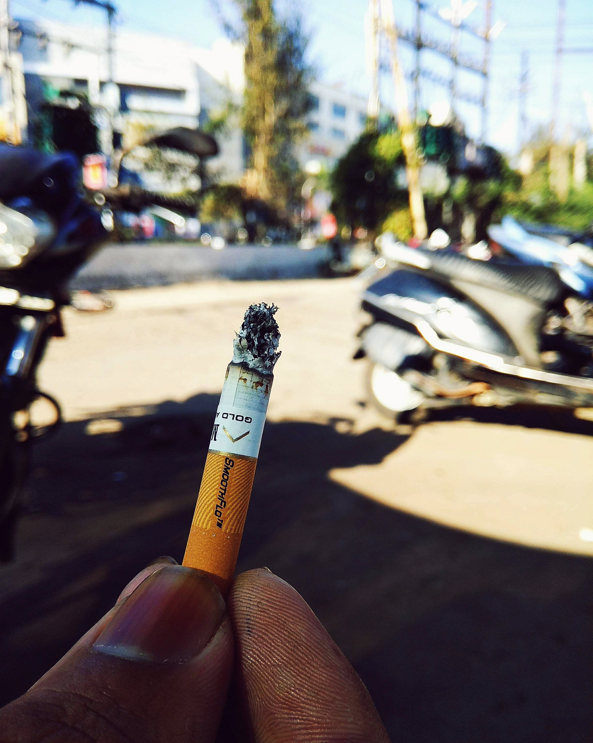 Free stock photo of cigar, cigarette, dangerous, orange