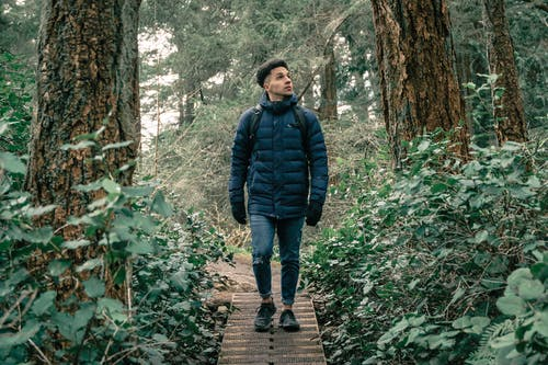 Man in Black Bubble Jacket Walking on Wooden Pathway in the Middle of Forest
