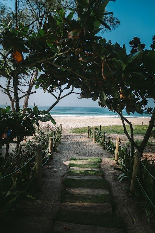 Ingyenes stockfotó a strandon, napos nap, napsütéses nap témában
