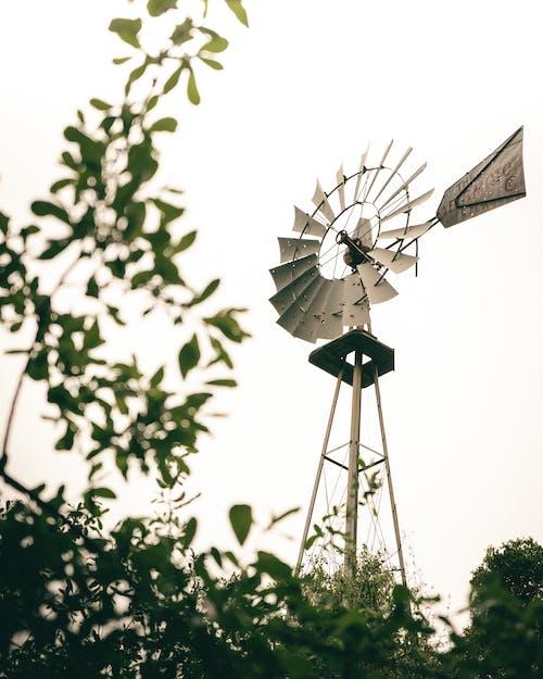 Free stock photo of alternative, ecology, electricity