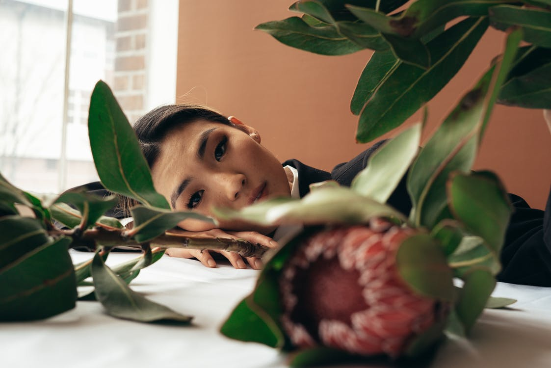 Charming Asian female with dark hair resting head on arms on white table with protea flowers