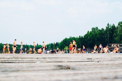 คลังภาพถ่ายฟรี ของ ฤดูร้อน, สระว่ายน้ำ