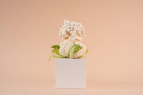 White Roses on White Surface