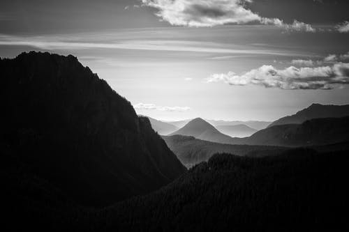 Fotos de stock gratuitas de blanco y negro, cielo, con niebla, escénico