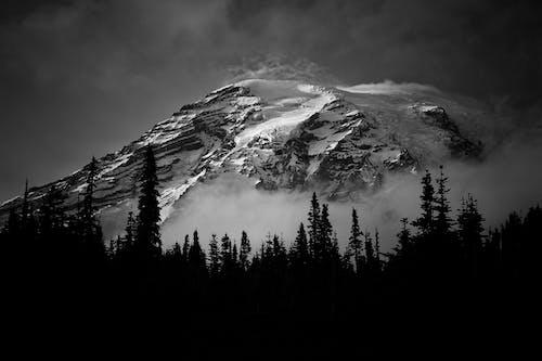 Gratis stockfoto met berg