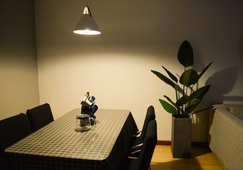 açık, ahşap, apartman, bitki içeren Ücretsiz stok fotoğraf
