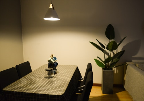 Photo of Dining Table near the Plant