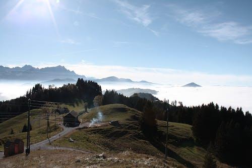 太陽, 霧 的 免费素材照片