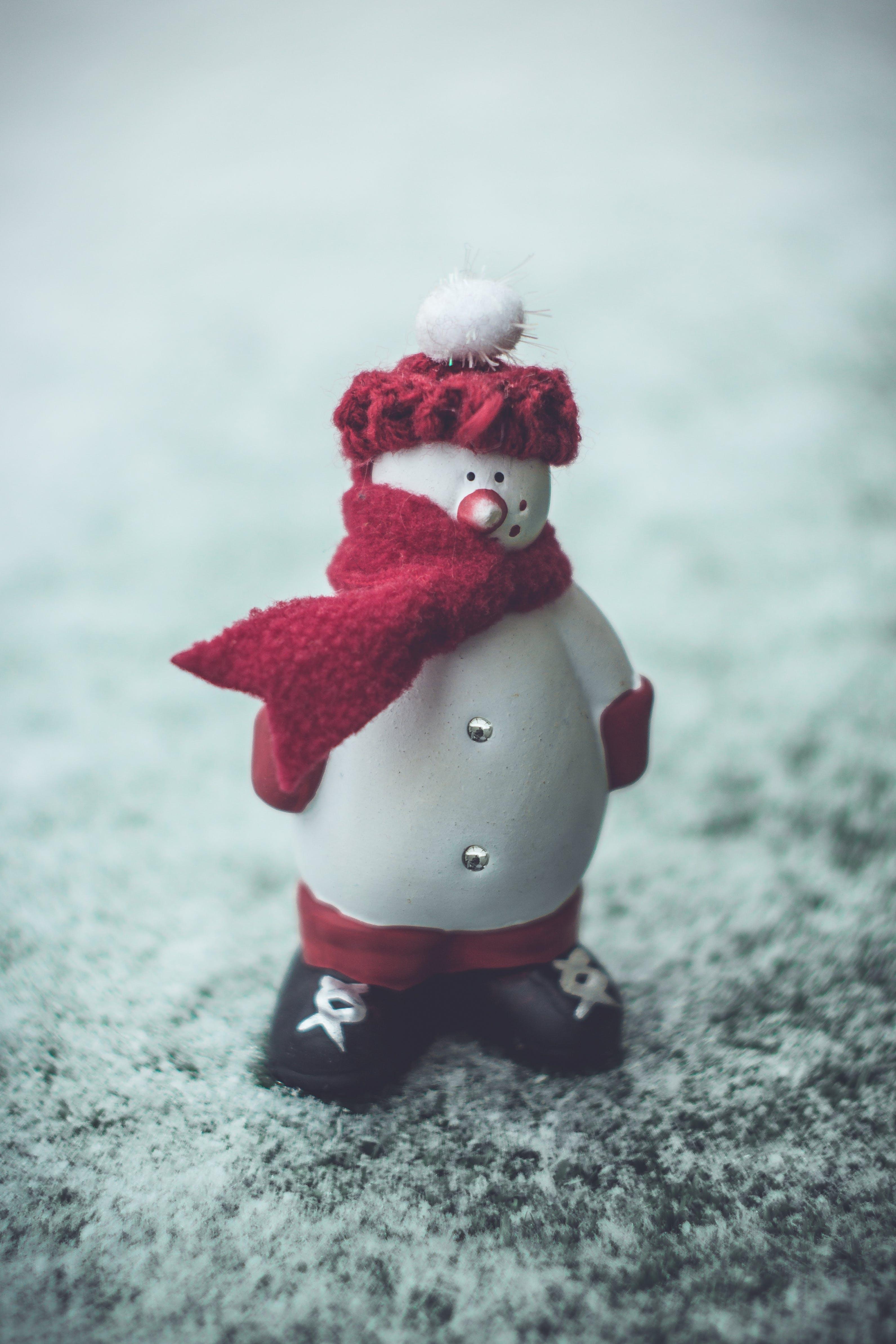 Free stock photo of winter, grass, christmas, figure