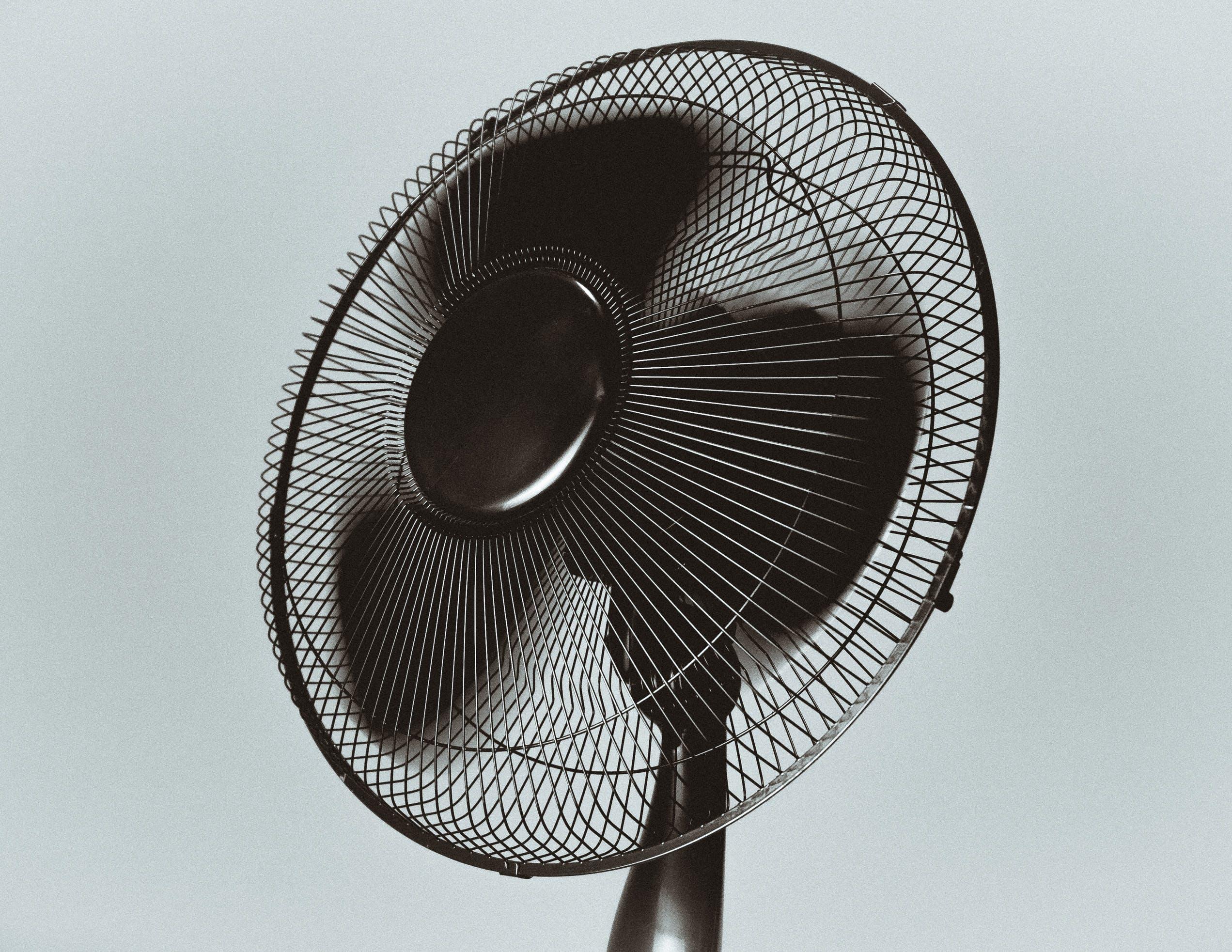 Free stock photo of wind, fan