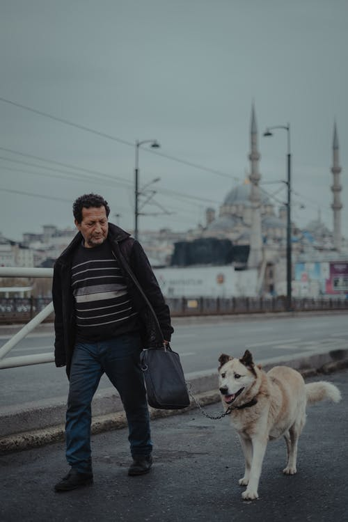 Man with dog walking in city district on pavement