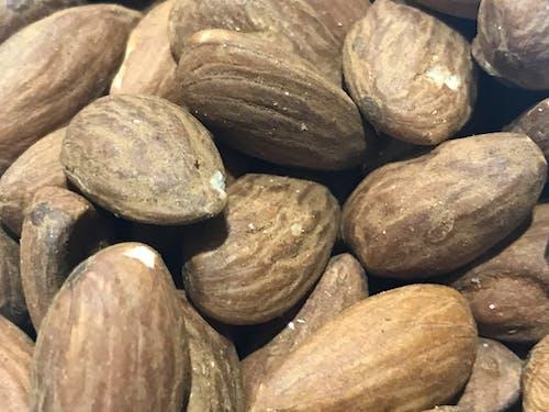 Free stock photo of almonds