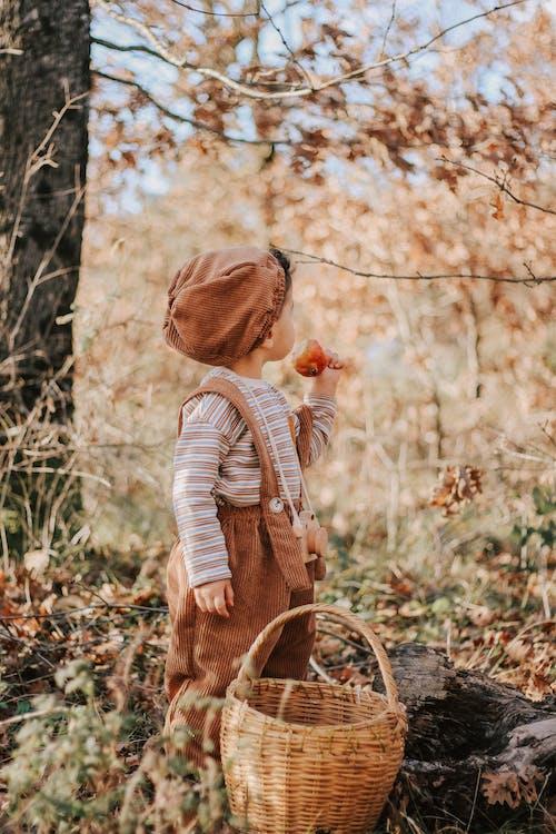 Little boy standing in forest near wicker basket