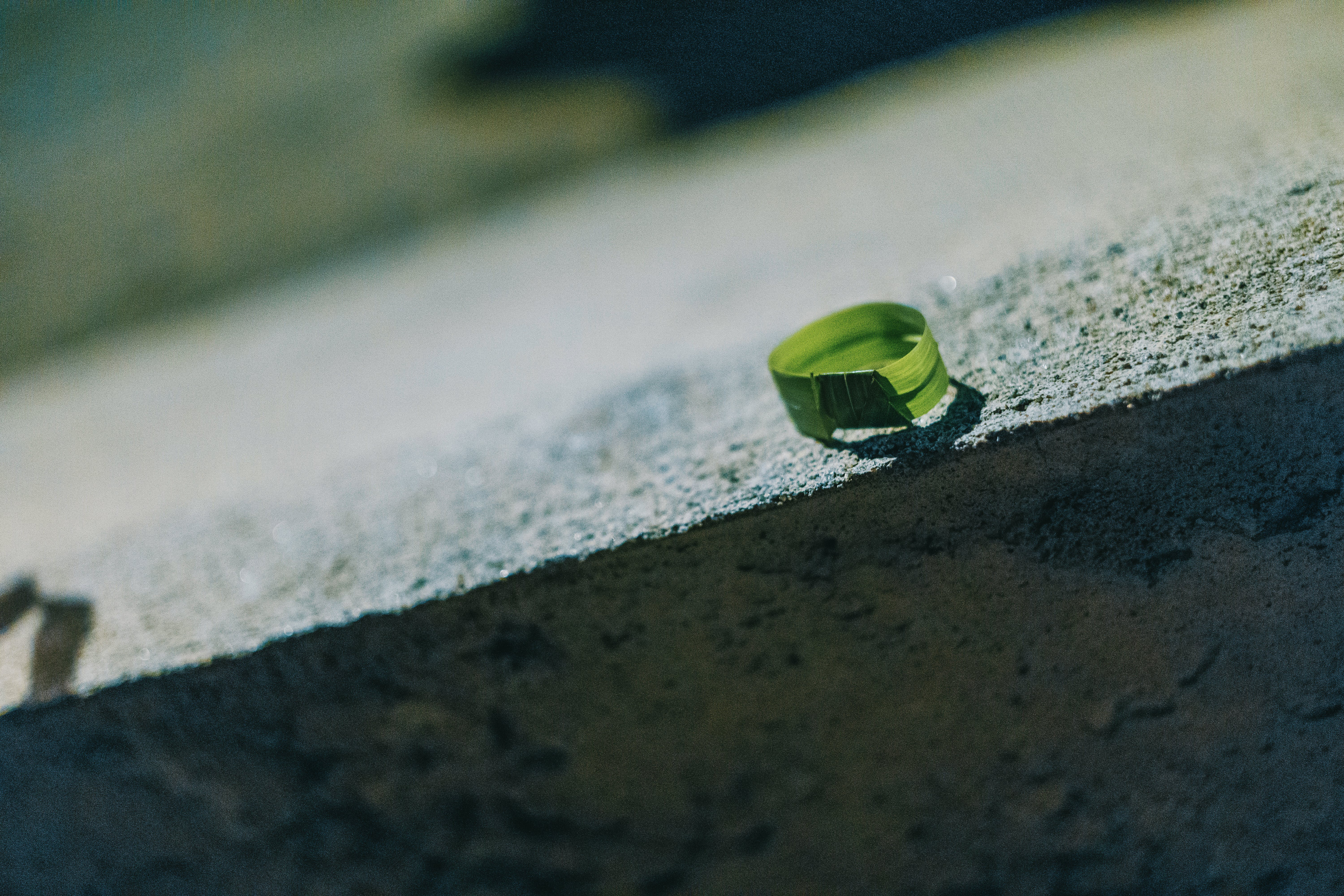 Photo of Round Green Leaf on Gray Concrete Bench