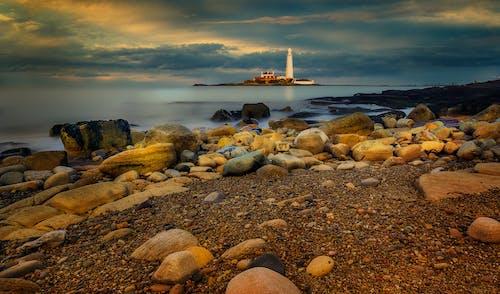 Brown and Gray Rocks on Seashore