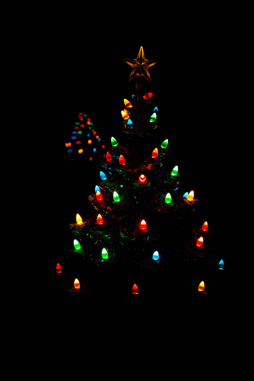 Free stock photo of christmas lights, christmas tree, holiday, multicolored