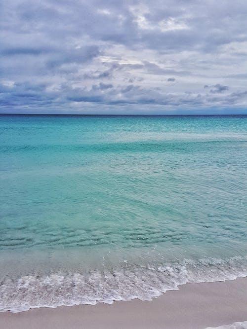 佛羅里達, 天性, 招手, 暴風雨 的 免費圖庫相片