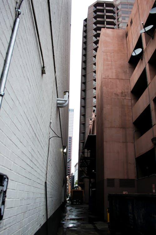 建築, 新奧爾良, 法國人, 深度 的 免費圖庫相片