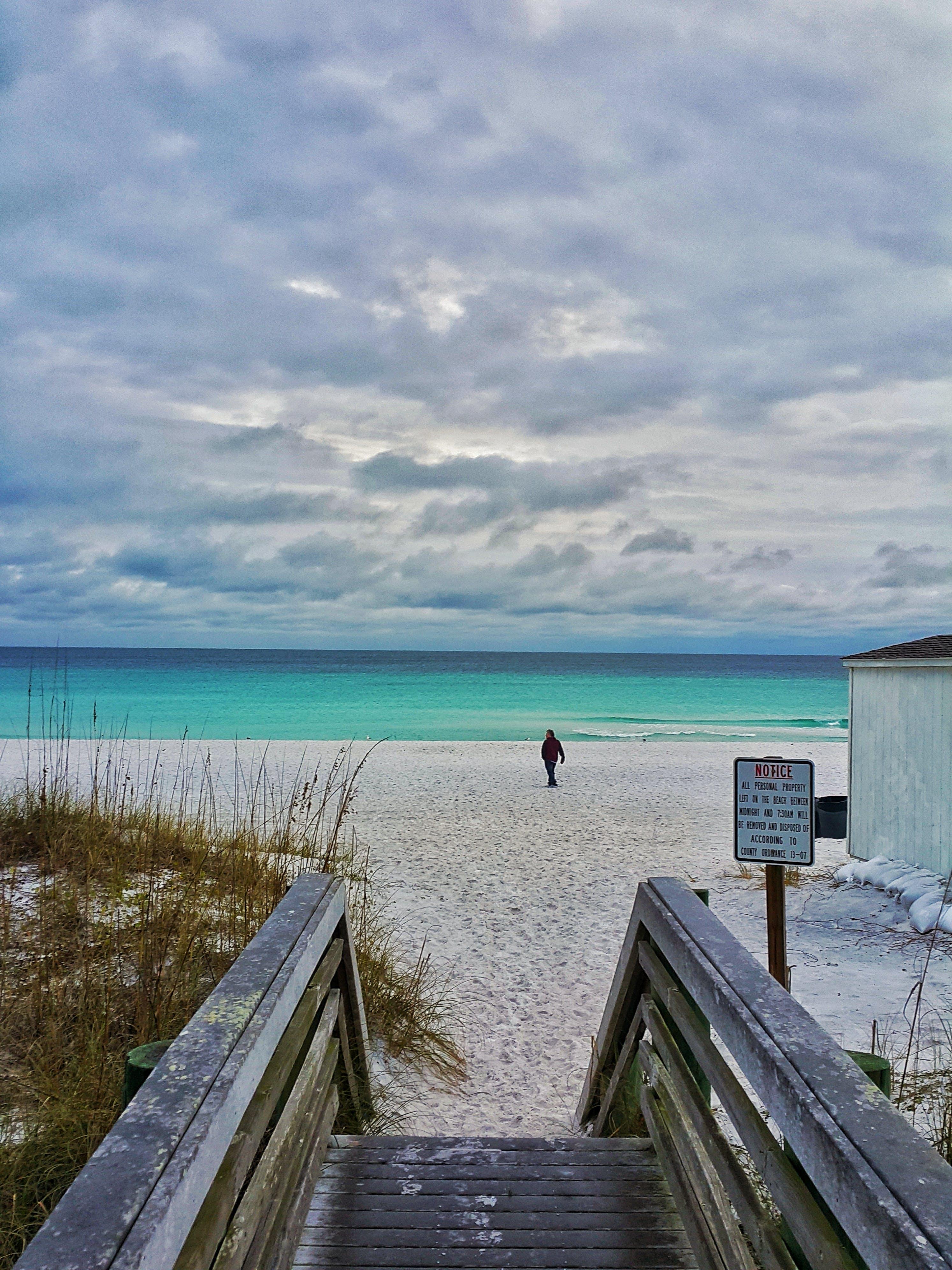 Free stock photo of beach, beach safety, florida, nature