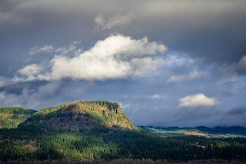 Gratis lagerfoto af bakke, bjerg, efterår