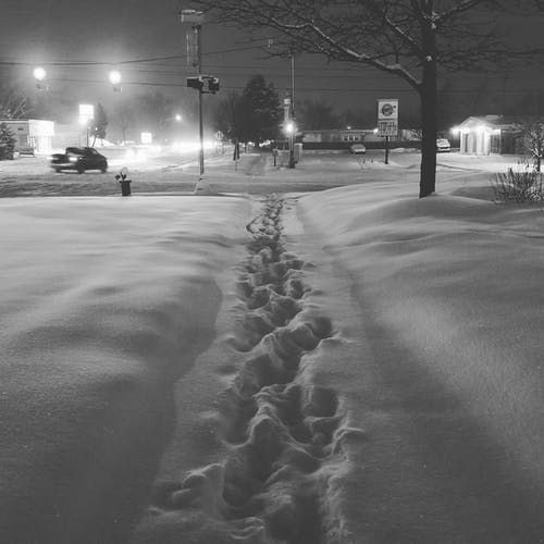 Ảnh lưu trữ miễn phí về bão tuyết, có tuyết rơi, tuyết, tuyết rơi