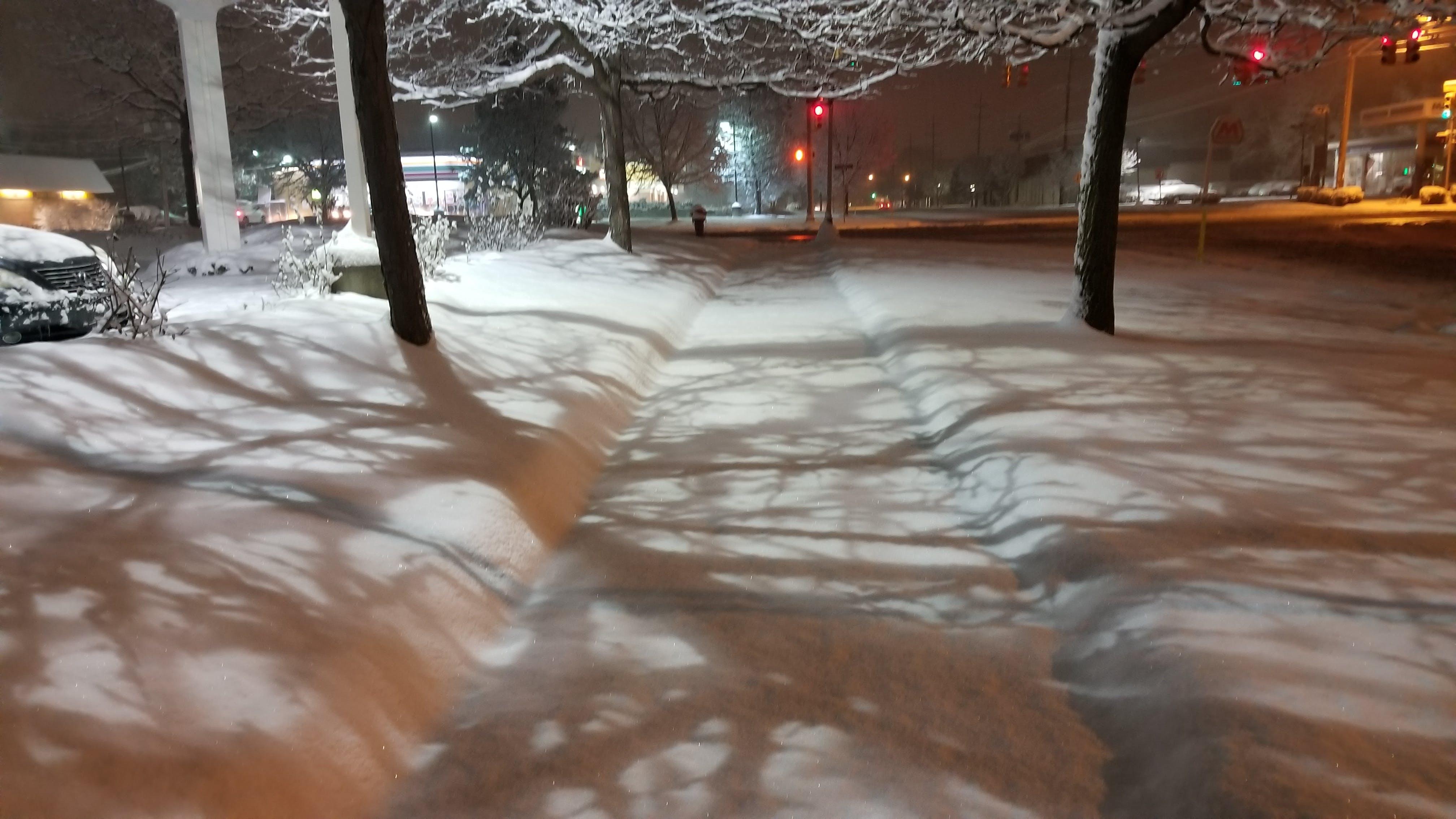 Gratis arkivbilde med snø, snødekt, snøfall, snøstorm