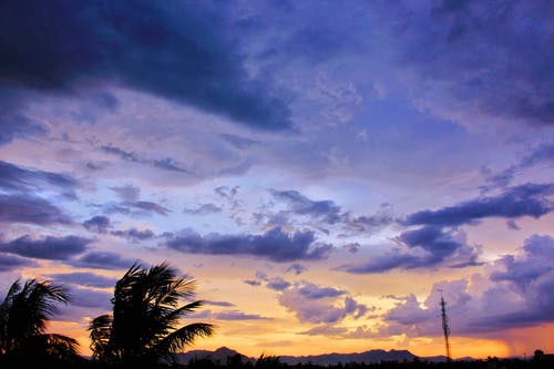 Foto d'estoc gratuïta de arbres, capvespre, cel, cel al capvespre