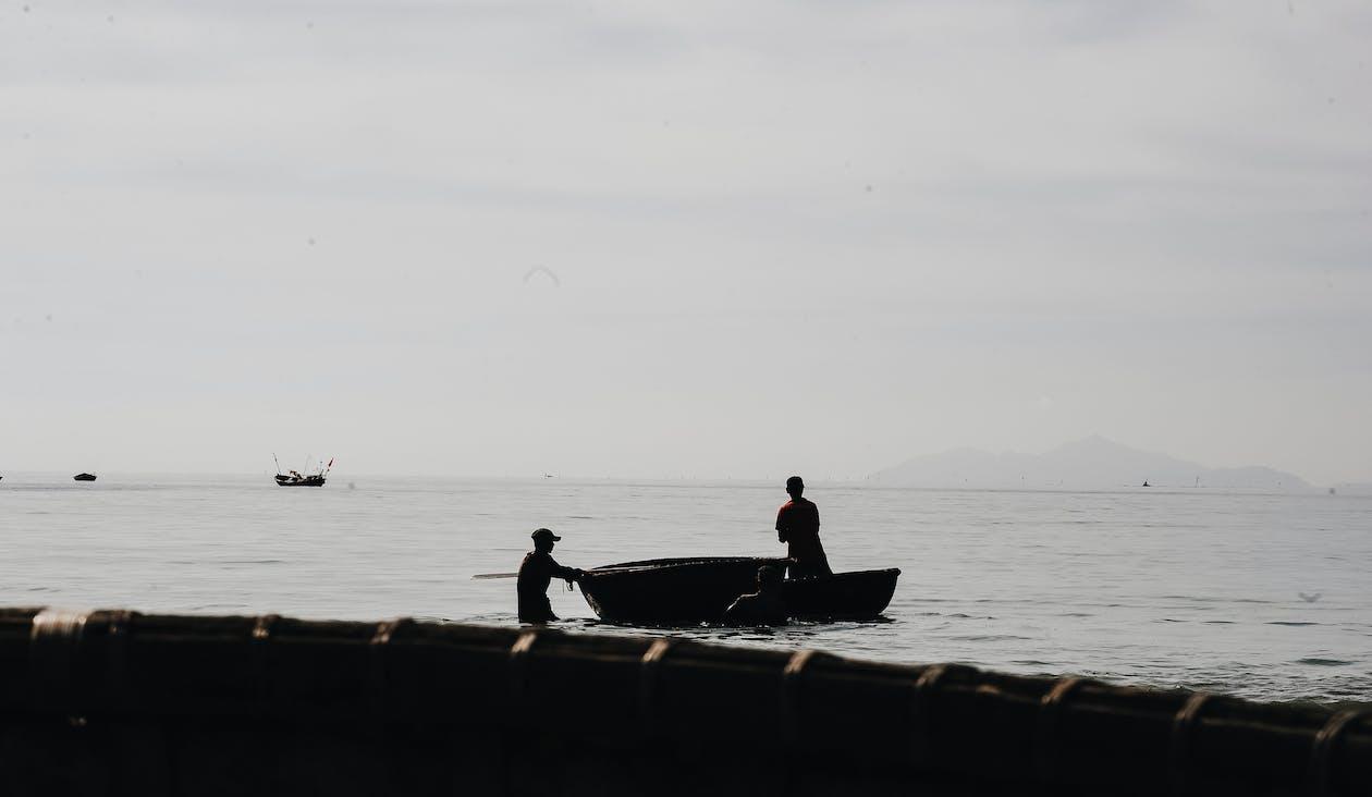 acción, agua, barco de pesca