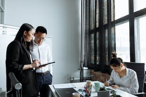 Gratis lagerfoto af 3 personer, aktie, arbejde