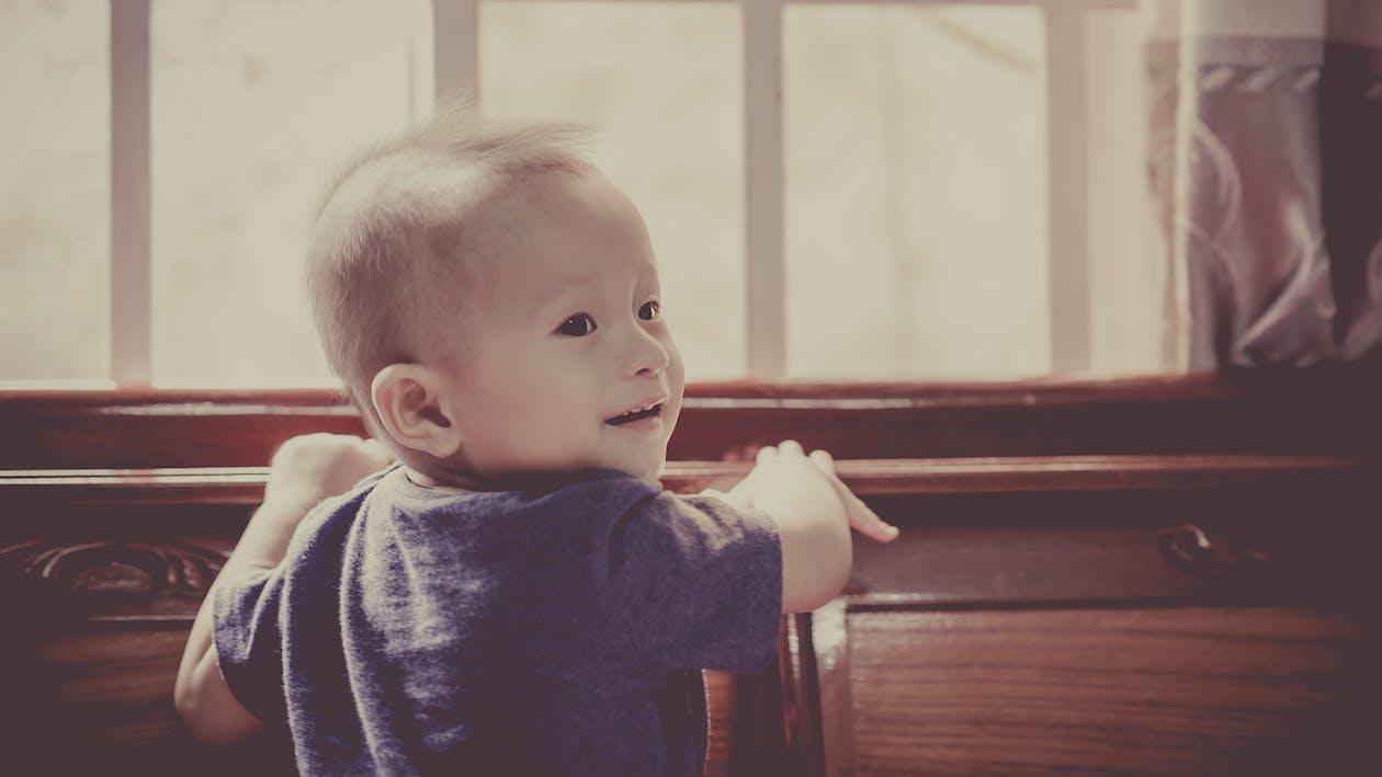 adentro, adorable, bebé