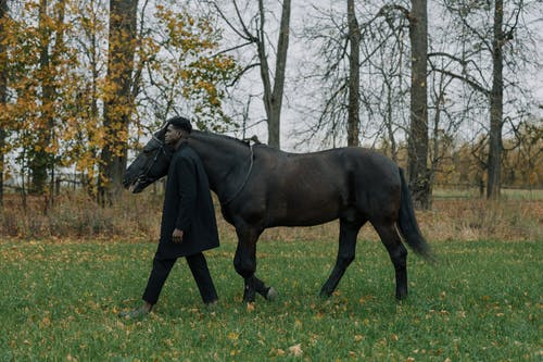 A Man Walking with a Horse