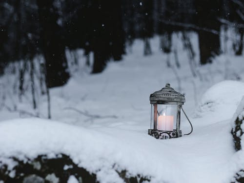 Free stock photo of candle, forest, lantern