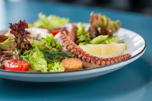 A Seafood Salad on a Plate